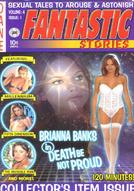 Fantastic Stories #4